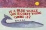 Is a Blue Whale the Biggest Thing There Is? PS01