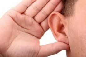 listening to tradesmen