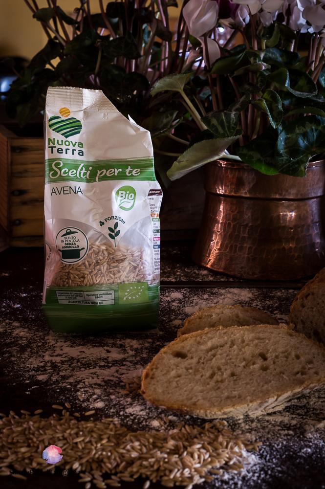 pane integrale di farine miste con chicchi di avena bio Nuova Terra