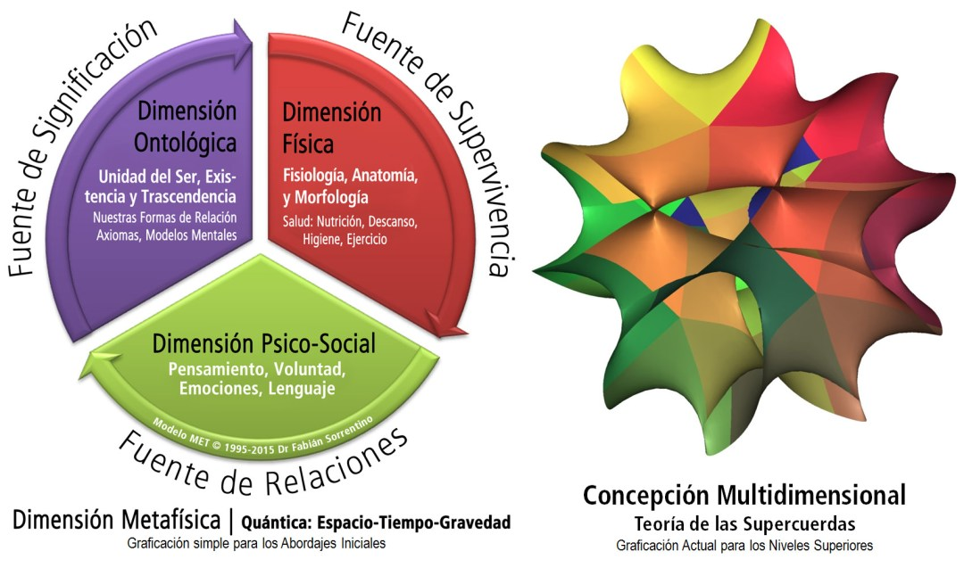 4d-completo