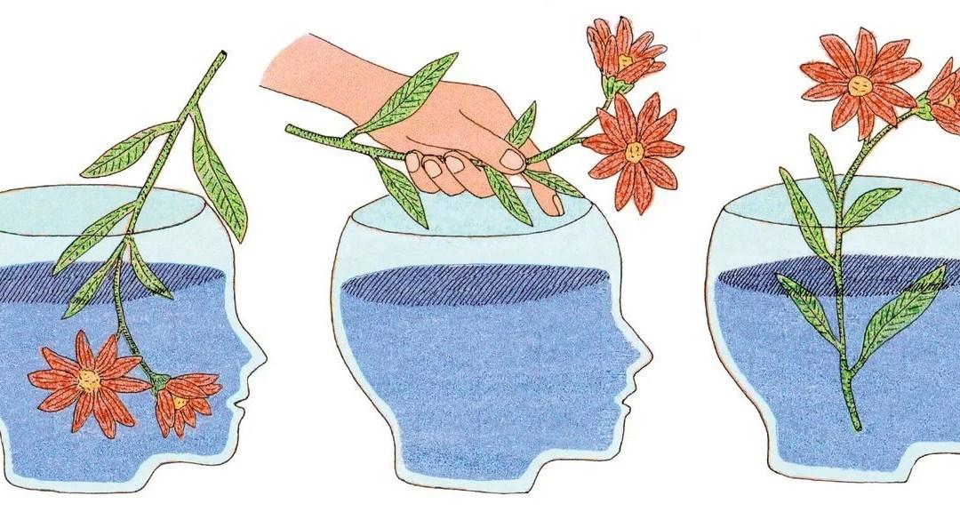 ¿Eres inteligente o racional?