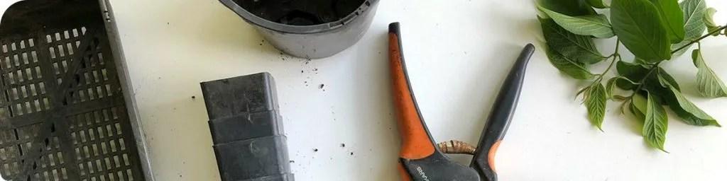 Close up of various gardening tools