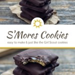 5 stacked s'mores cookies with a bite out of the top one on a piece of brown paper with a bamboo tray of cookies behind all on a wooden surface (with title overlay)