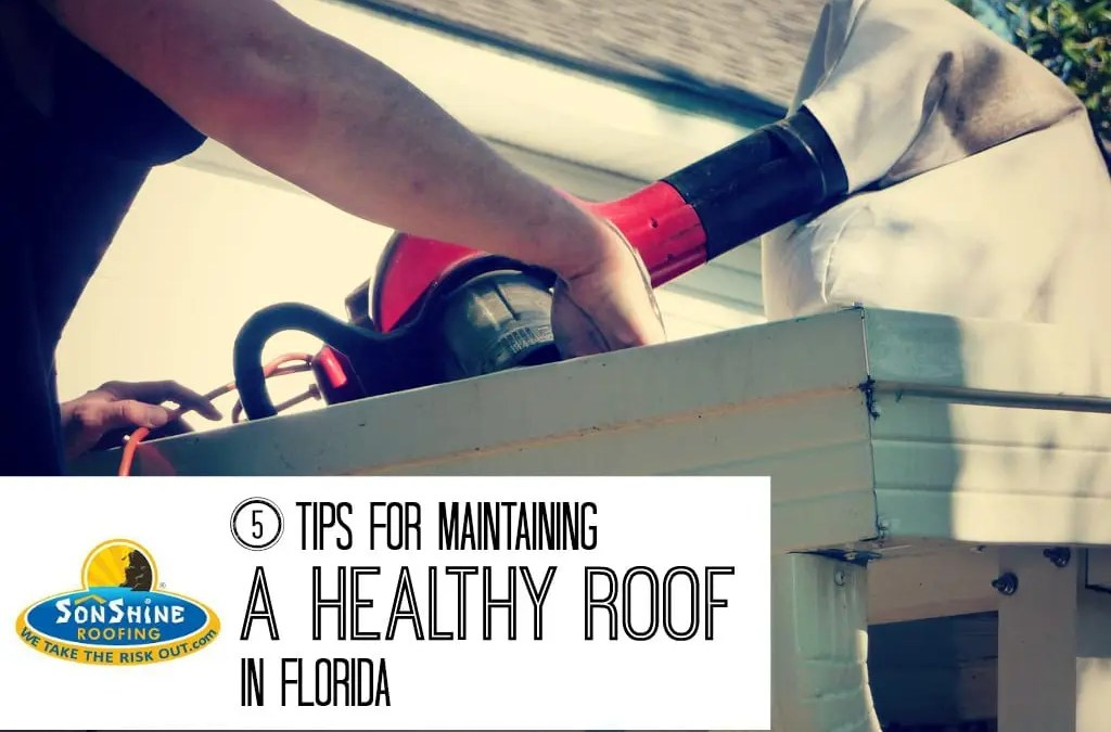 5 Tips for Maintaining a Healthy Roof in Florida