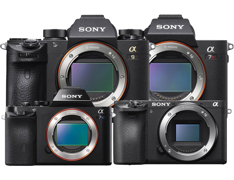 sony mirrorless camera guide