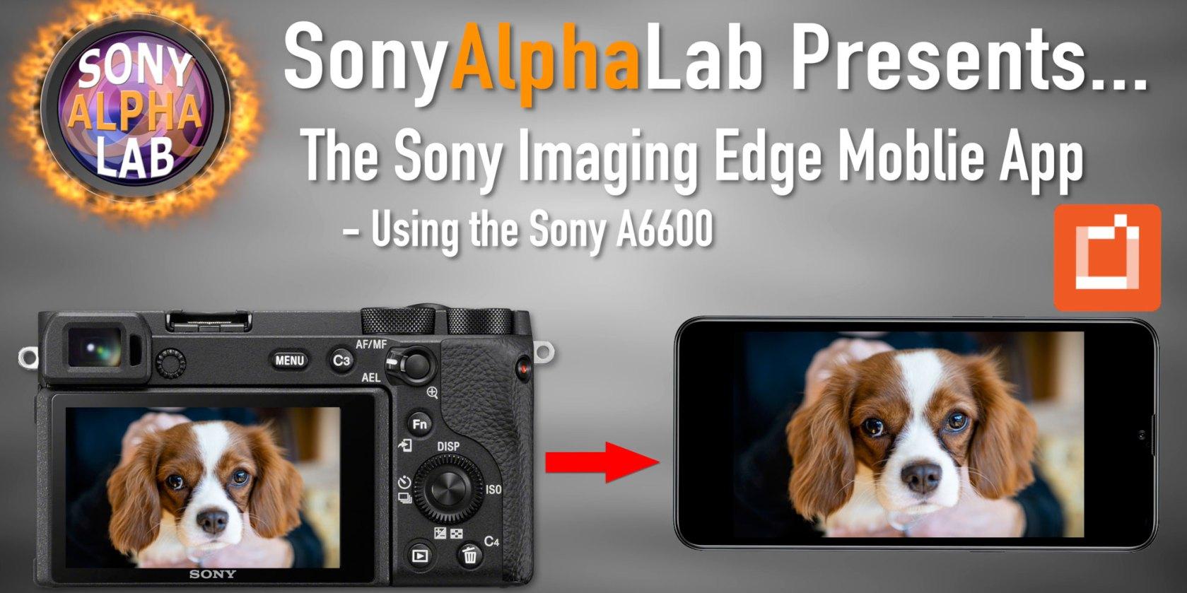 Sony Imaging Edge Mobile App Tutorial