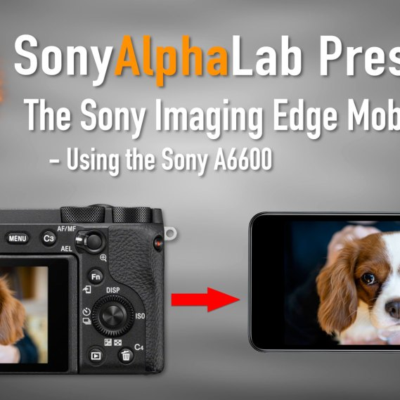 Sony Imaging Edge Mobile App Tutorial