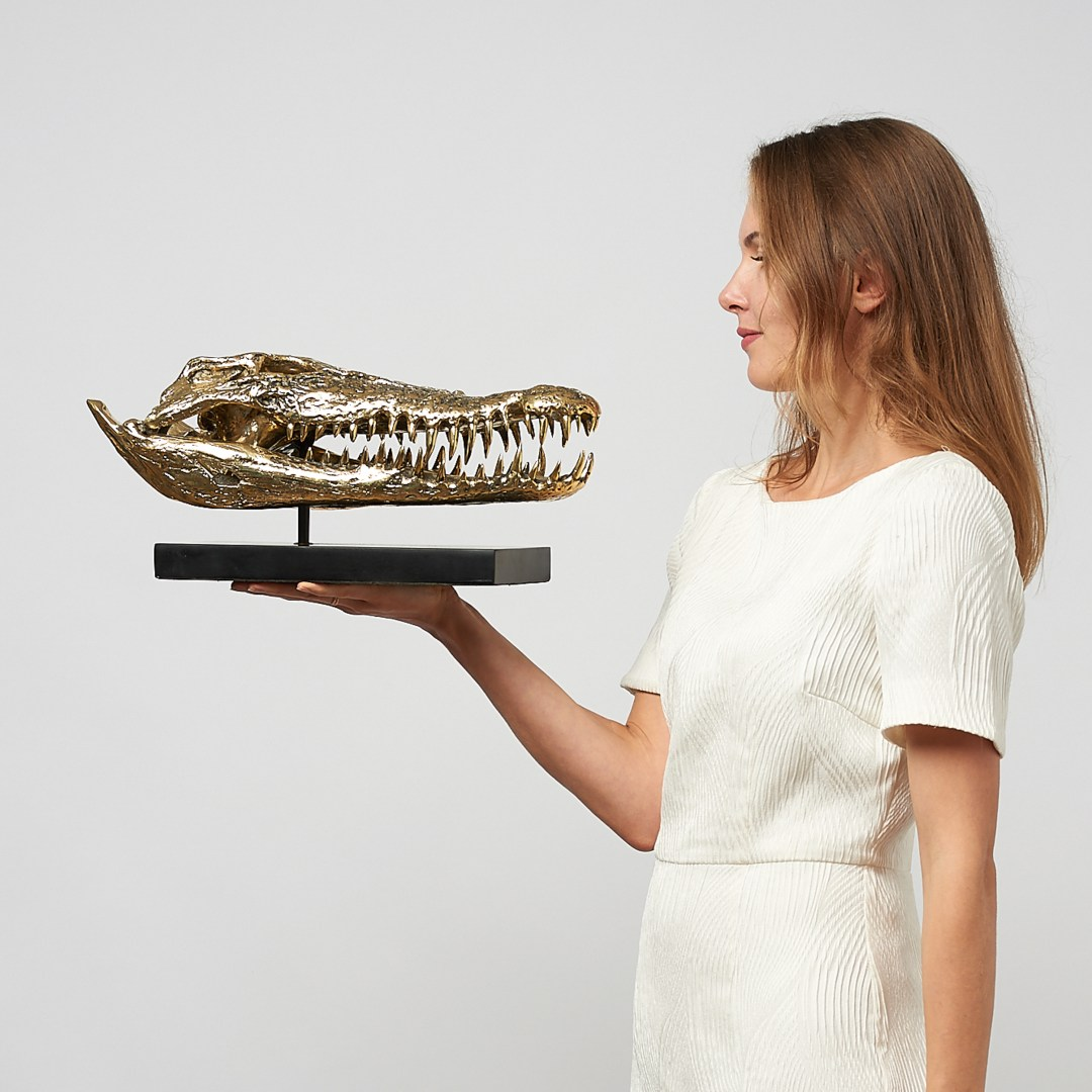 Large Saltwater Crocodile Skull in polished bronze