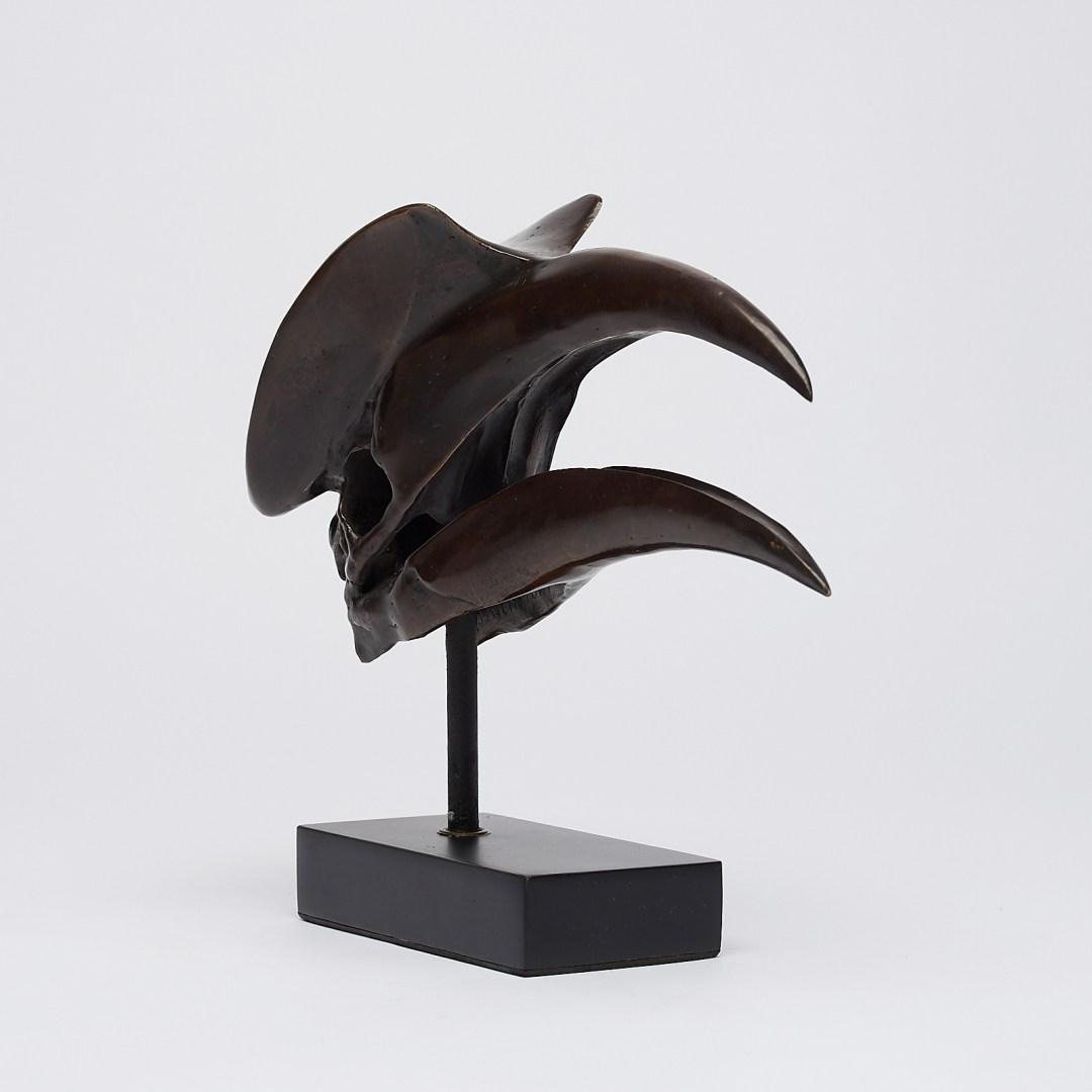 bronze Great Hornbill Skull