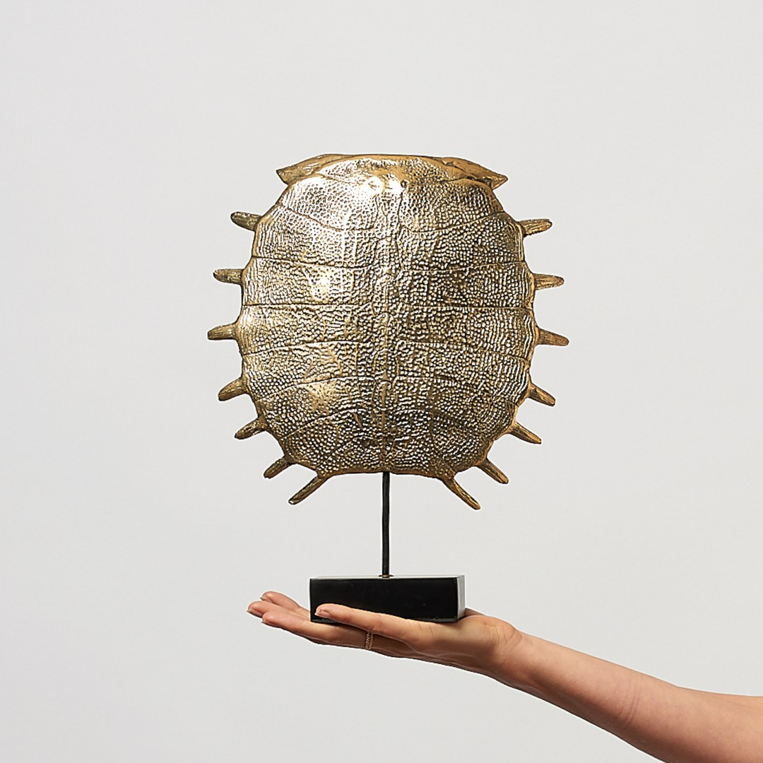 medium turtle shell in polished bronze