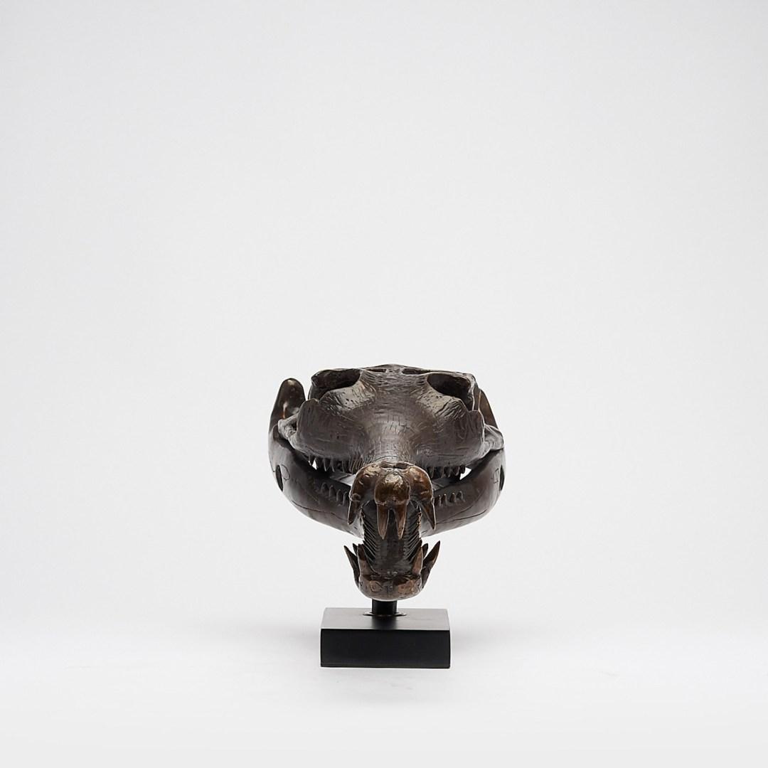 large bronze gharial skull