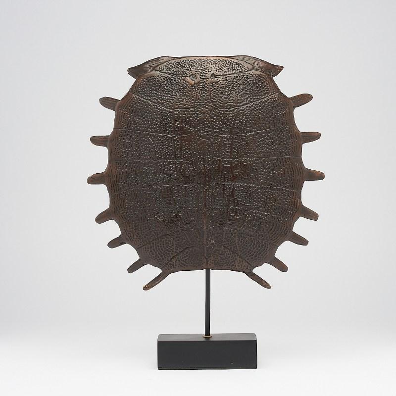 medium bronze Turtle Shell
