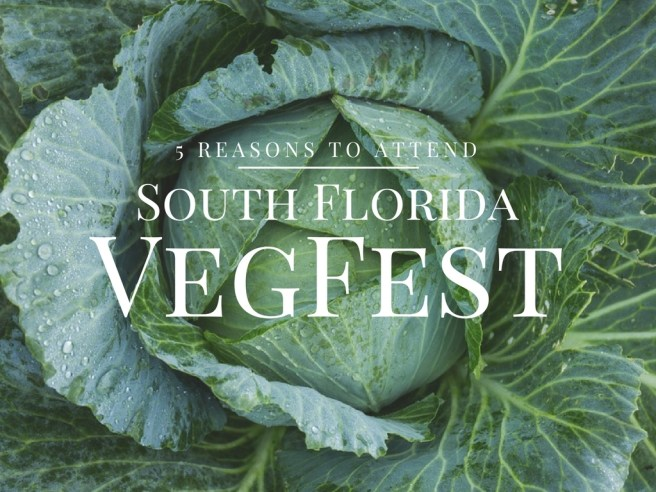 south-florida-vegfest