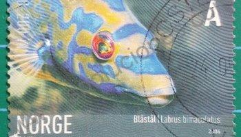 Sello de pez Labrus bimaculatus Noruega 2006