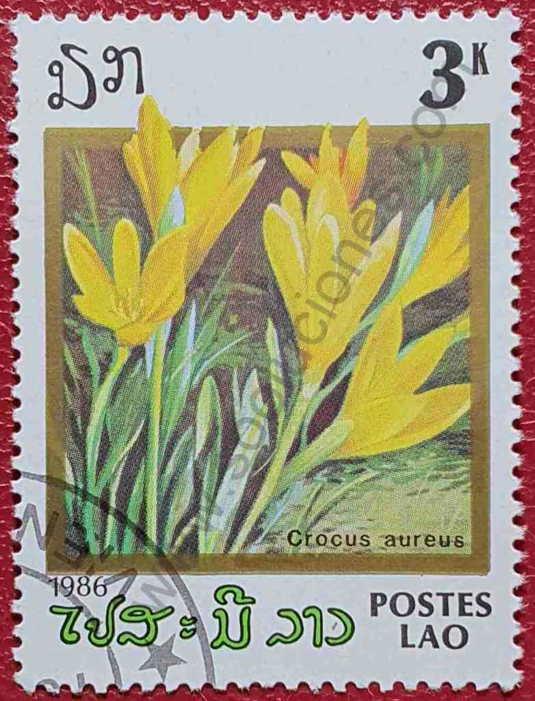 Sello Flor Crocus amarillo - Laos 1986