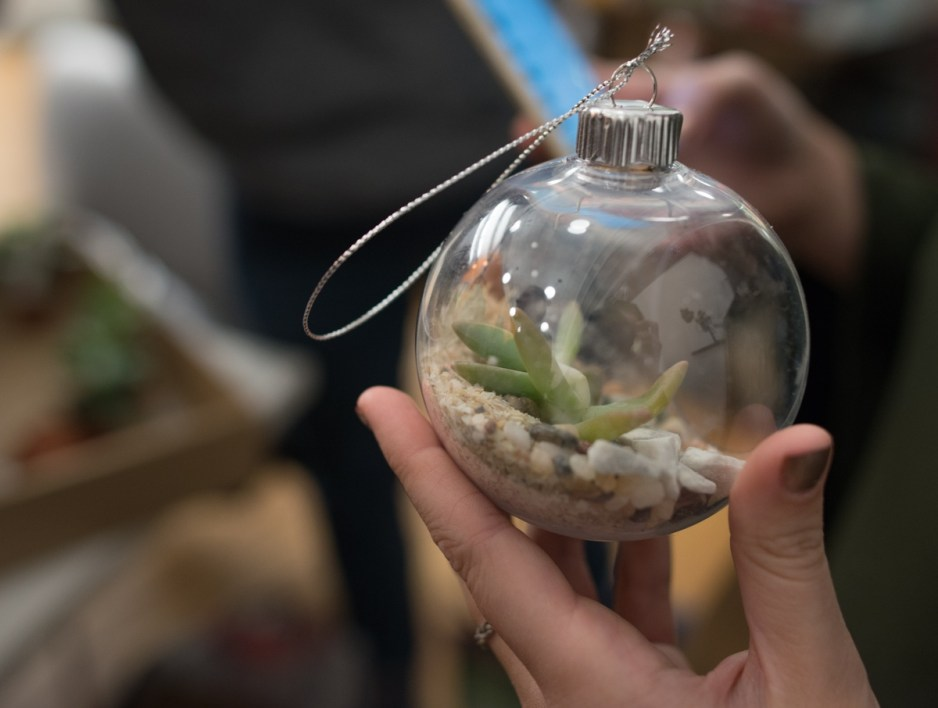 Boston Event Photography: Workbar Terrarium Crafts & Drafts