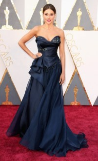 the-oscars-red-carpet-looks-everyone-is-talking-about-1677150-1456703269.640x0c