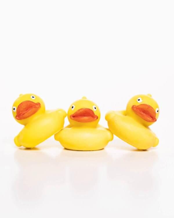 Ducky soap, 2.5 oz