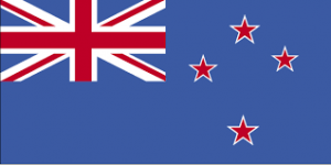 NS Flagge
