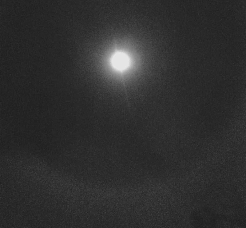 david_wilcox_full_moon