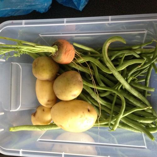 Carottes, pommes de terre, haricots verts