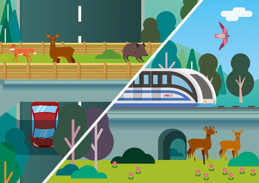 ilustration parc du pilat avec animaux sauvages et moyens de transport (train, voitures)