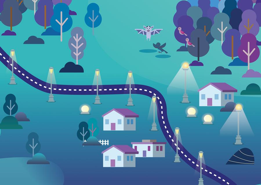 illustration parc du pilat de nuit, deux chauve-souris ont du problème à traverser une route éclairée