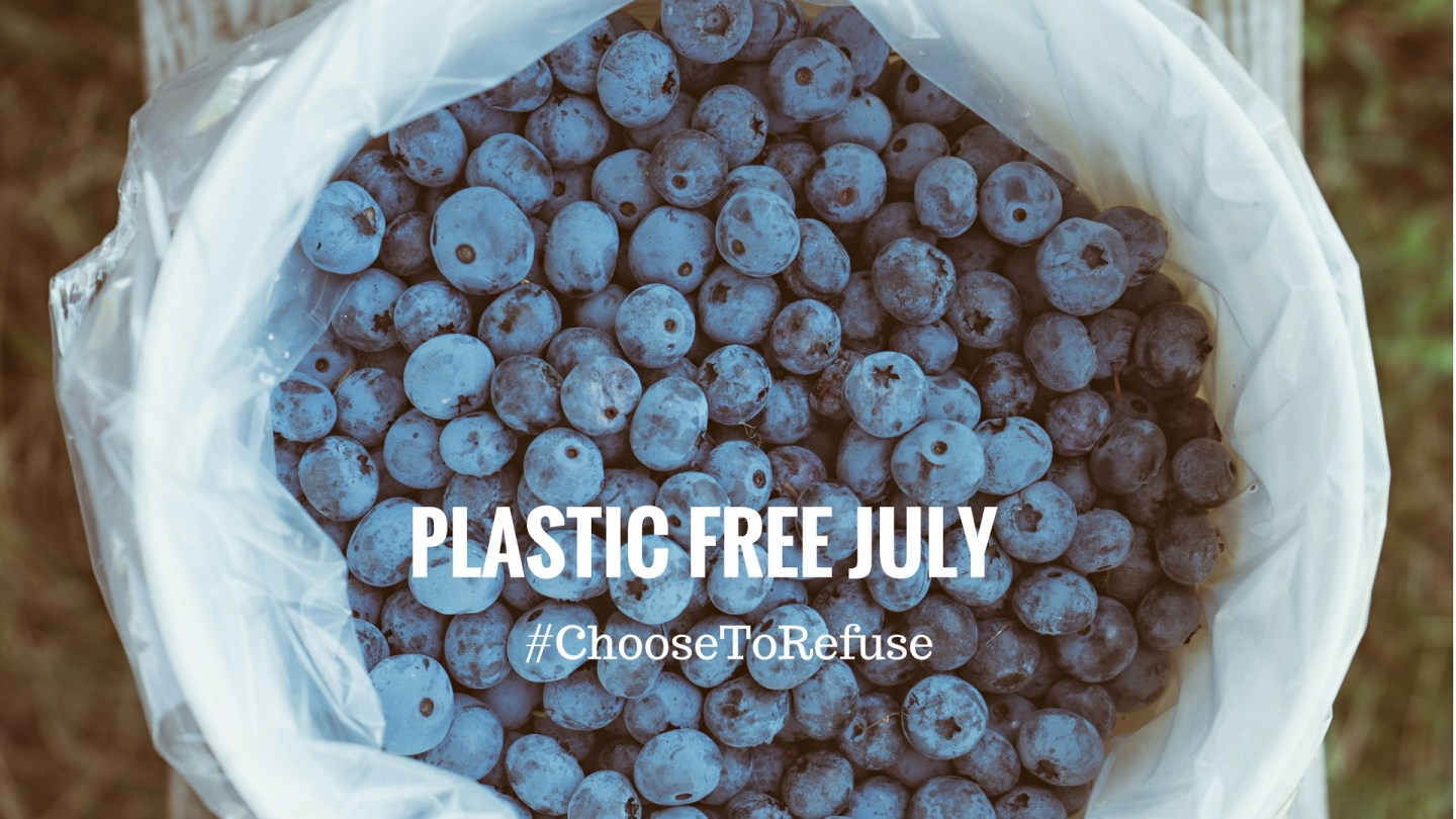 I'm taking part in Plastic Free July
