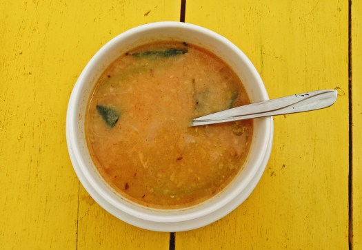 India vegan food travel blog