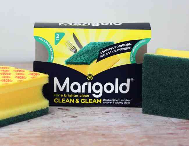 Marigold Clean and Gleam Sponge big Spring Clean