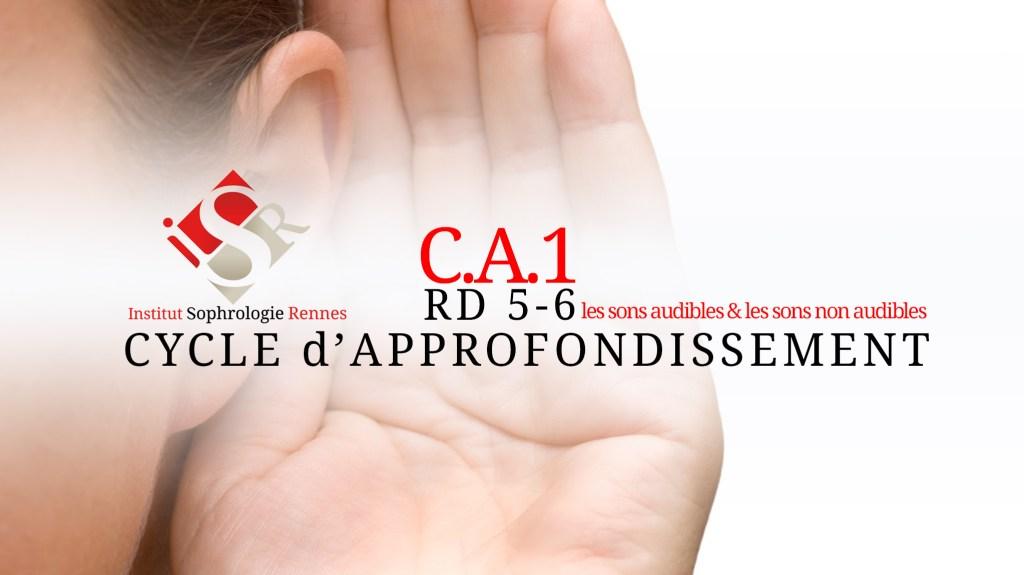 C.A.1 : Les sons audibles & les sons non audibles