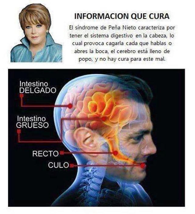 Meme-Pena-Nieto-911-8