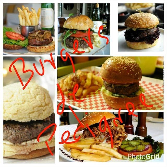 burgers_de_pedigreeee
