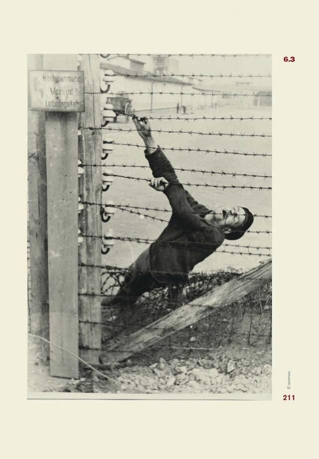 mauthausen6