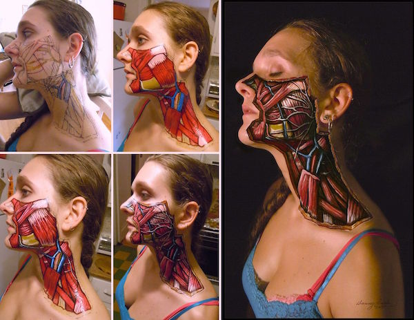 5.-5stages-and-branches-of-Facial-Nerve-1440005202