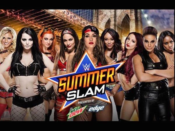 Summerslam-WWE-Undertaker-BrockLesnar8