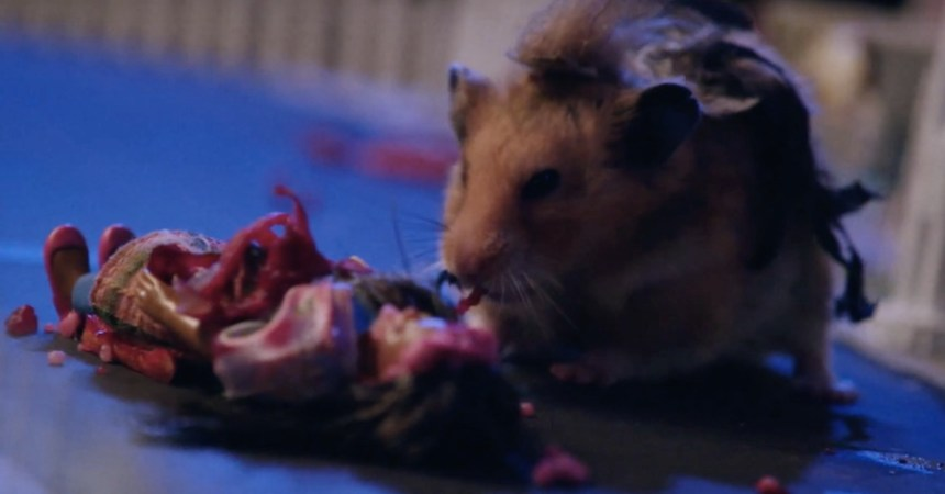 Tiny Hamster is a Zombie!