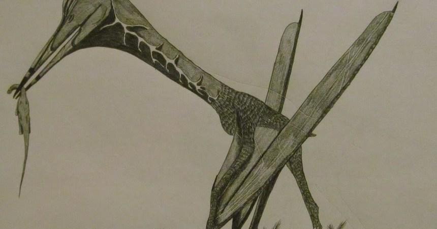 El poderoso Hatzegopteryx