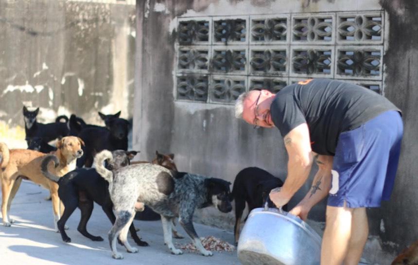 Baines - Rescatador de perros