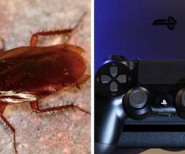 Cucarachas en la PlayStation 4