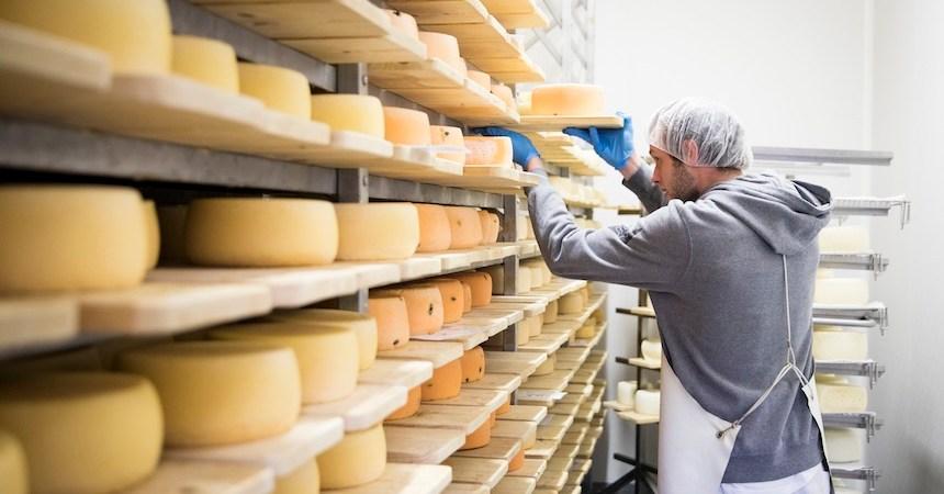 Bodega de queso