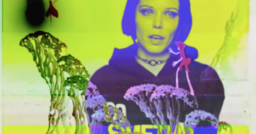 "Alice Glass estrenó video para ""The Altar"", un viaje psicodélico en un cuento de hadas."