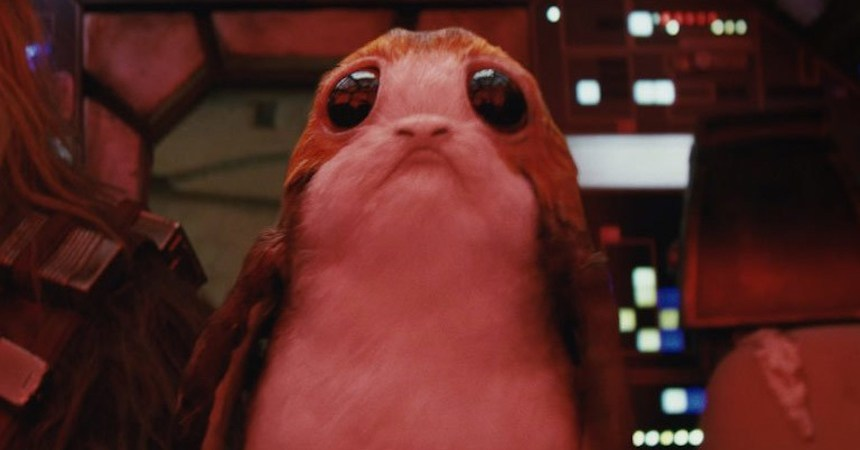 Porgs - Star Wars: The Last Jedi