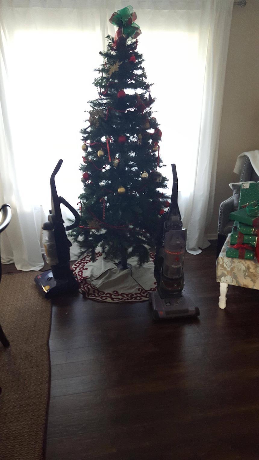Protegiendo árboles de Navidad - Aspiradoras