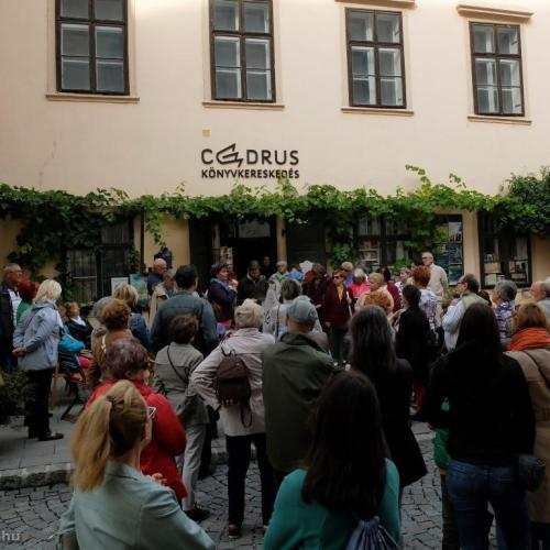 Cédrustól cédrusig – kultúrtörténeti séta Sopronban a Csontváry Emlékév tiszteletére