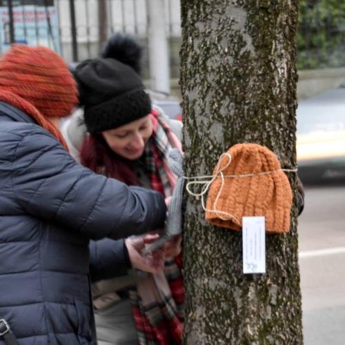 Adományozás: Sapkák, sálak, kesztyűk kerültek Sopron fáira és padjaira!