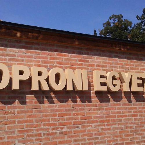 Állami fenntartás helyett vagyonkezelő alapítványhoz kerül át a Soproni Egyetem működtetése