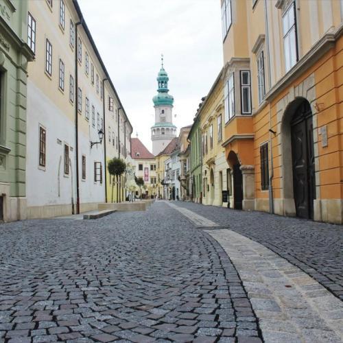 2020-ban is együtt nyomoz az ország a Detektív Hétvégén, így Sopronban is!