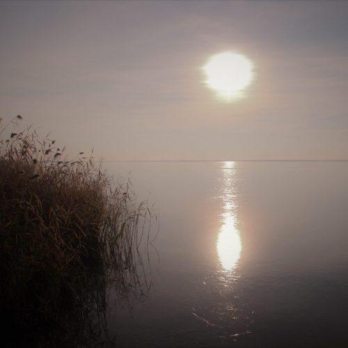 Ellenzi a Fertő tó Dunából való vízfeltöltését az osztrák WWF