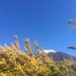 富士山初冠雪!奥庭をハイキング♪
